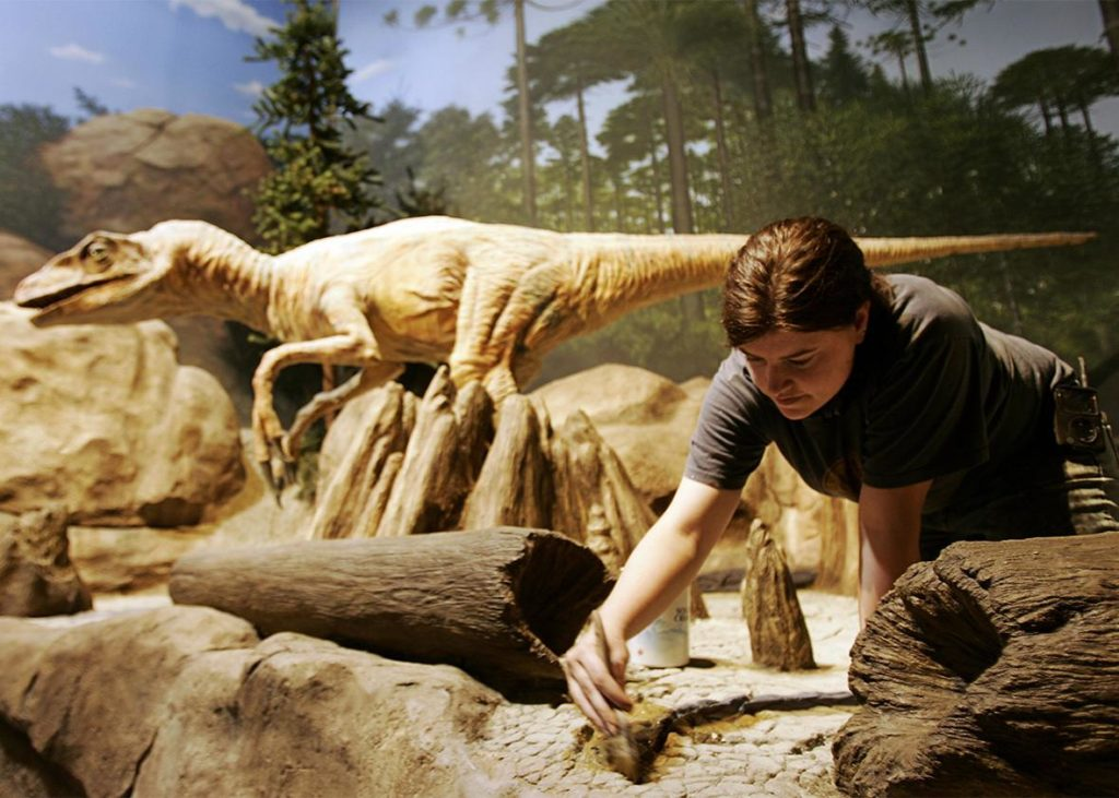 The Creation Museum dinosaur Exhibit